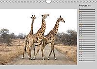 Twigas - Giraffen (Wandkalender 2019 DIN A4 quer) - Produktdetailbild 2