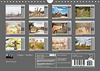 Twigas - Giraffen (Wandkalender 2019 DIN A4 quer) - Produktdetailbild 13