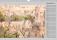 Twigas - Giraffen (Wandkalender 2019 DIN A4 quer) - Produktdetailbild 11