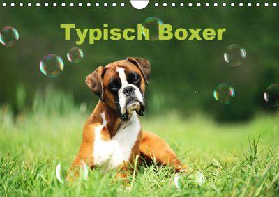 Typisch Boxer (Wandkalender 2019 DIN A4 quer), Yvonne Janetzek