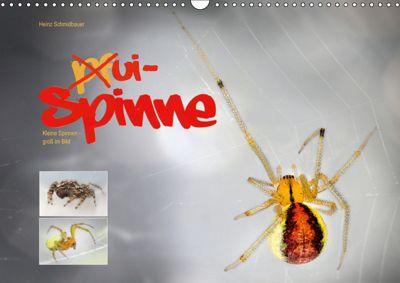 ui - Spinne. Kleine Spinnen - gross im Bild (Wandkalender 2019 DIN A3 quer), Heinz Schmidbauer