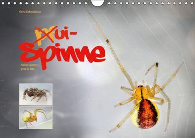 ui - Spinne. Kleine Spinnen - groß im Bild (Wandkalender 2019 DIN A4 quer), Heinz Schmidbauer