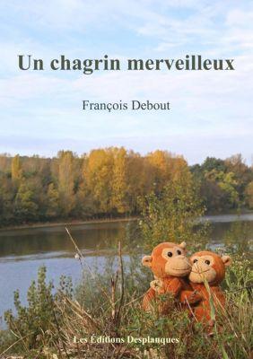 Un chagrin merveilleux, François Debout
