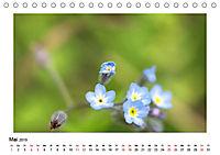 Un-Kraut (Tischkalender 2019 DIN A5 quer) - Produktdetailbild 5