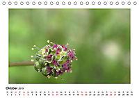 Un-Kraut (Tischkalender 2019 DIN A5 quer) - Produktdetailbild 10