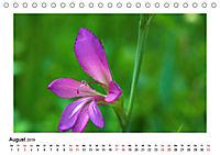 Un-Kraut (Tischkalender 2019 DIN A5 quer) - Produktdetailbild 8