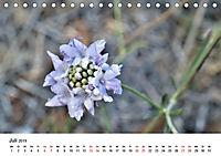 Un-Kraut (Tischkalender 2019 DIN A5 quer) - Produktdetailbild 7