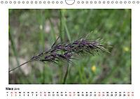 Un-Kraut (Wandkalender 2019 DIN A4 quer) - Produktdetailbild 3