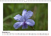 Un-Kraut (Wandkalender 2019 DIN A4 quer) - Produktdetailbild 11