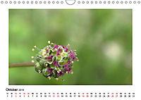 Un-Kraut (Wandkalender 2019 DIN A4 quer) - Produktdetailbild 10
