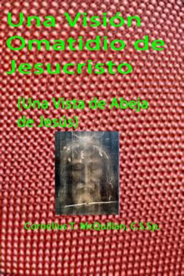 Una Visión Omatidio de Jesucristo, Cornelius  McQuillan