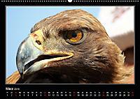 Unbekanntes Kirgistan (Wandkalender 2019 DIN A2 quer) - Produktdetailbild 3