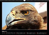 Unbekanntes Kirgistan (Wandkalender 2019 DIN A3 quer) - Produktdetailbild 3