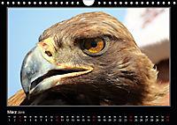 Unbekanntes Kirgistan (Wandkalender 2019 DIN A4 quer) - Produktdetailbild 3