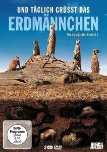 Und täglich grüßt das Erdmännchen - Die komplette Staffel 1, Animal Planet
