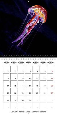 UNDERWATER CREATURES (Wall Calendar 2019 300 × 300 mm Square) - Produktdetailbild 1