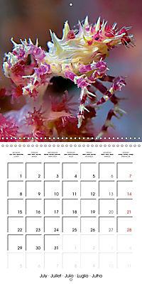 UNDERWATER CREATURES (Wall Calendar 2019 300 × 300 mm Square) - Produktdetailbild 7