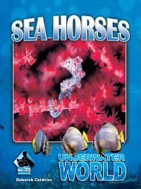 Underwater World Set 1: Sea Horses, Deborah Coldiron