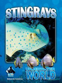 Underwater World Set 1: Stingrays, Deborah Coldiron