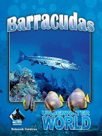 Underwater World Set 2: Barracuda, Deborah Coldiron