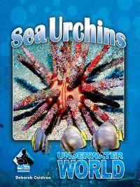 Underwater World Set 2: Sea Urchins, Deborah Coldiron