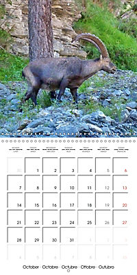 Unique Alpine World (Wall Calendar 2019 300 × 300 mm Square) - Produktdetailbild 10