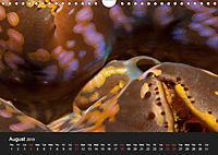 Unique Creatures of the Under Water World (Wall Calendar 2019 DIN A4 Landscape) - Produktdetailbild 8
