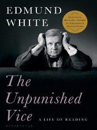 Unpunished Vice, Edmund White