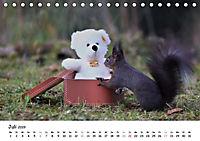 Unsere Eichhörnchen in Bayern (Tischkalender 2019 DIN A5 quer) - Produktdetailbild 7