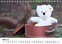 Unsere Eichhörnchen in Bayern (Tischkalender 2019 DIN A5 quer) - Produktdetailbild 3