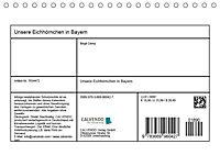 Unsere Eichhörnchen in Bayern (Tischkalender 2019 DIN A5 quer) - Produktdetailbild 13