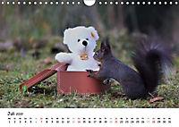 Unsere Eichhörnchen in Bayern (Wandkalender 2019 DIN A4 quer) - Produktdetailbild 7