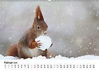 Unsere Eichhörnchen in Bayern (Wandkalender 2019 DIN A2 quer) - Produktdetailbild 2