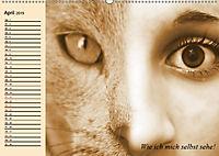 Unsere Katzen. Wie sie wirklich sind! (Wandkalender 2019 DIN A2 quer) - Produktdetailbild 4
