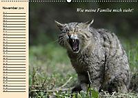 Unsere Katzen. Wie sie wirklich sind! (Wandkalender 2019 DIN A2 quer) - Produktdetailbild 11