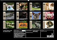 Unsere Katzen. Wie sie wirklich sind! (Wandkalender 2019 DIN A2 quer) - Produktdetailbild 13