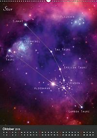 Unsere Sternbilder (Wandkalender 2019 DIN A2 hoch) - Produktdetailbild 10