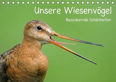 Unsere Wiesenvögel - Bezaubernde Schönheiten (Tischkalender 2019 DIN A5 quer), Christof Wermter