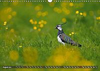 Unsere Wiesenvögel - Bezaubernde Schönheiten (Wandkalender 2019 DIN A3 quer) - Produktdetailbild 8