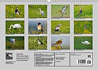 Unsere Wiesenvögel - Bezaubernde Schönheiten (Wandkalender 2019 DIN A3 quer) - Produktdetailbild 13
