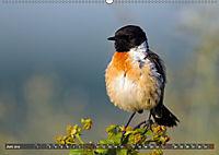 Unsere Wiesenvögel - Bezaubernde Schönheiten (Wandkalender 2019 DIN A2 quer) - Produktdetailbild 6