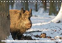 Unsere wilden Tiere im Winter (Tischkalender 2019 DIN A5 quer) - Produktdetailbild 1