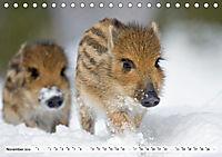Unsere wilden Tiere im Winter (Tischkalender 2019 DIN A5 quer) - Produktdetailbild 3