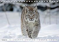 Unsere wilden Tiere im Winter (Tischkalender 2019 DIN A5 quer) - Produktdetailbild 2
