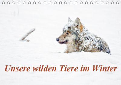 Unsere wilden Tiere im Winter (Tischkalender 2019 DIN A5 quer), Wilfried Martin