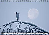 Unsere wilden Tiere im Winter (Tischkalender 2019 DIN A5 quer) - Produktdetailbild 5
