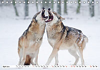 Unsere wilden Tiere im Winter (Tischkalender 2019 DIN A5 quer) - Produktdetailbild 4