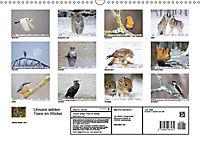 Unsere wilden Tiere im Winter (Wandkalender 2019 DIN A3 quer) - Produktdetailbild 5