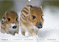 Unsere wilden Tiere im Winter (Wandkalender 2019 DIN A3 quer) - Produktdetailbild 2