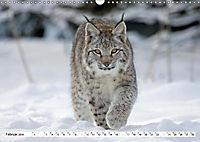 Unsere wilden Tiere im Winter (Wandkalender 2019 DIN A3 quer) - Produktdetailbild 7